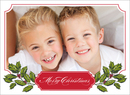 Holly Bough Folded Photo Cards