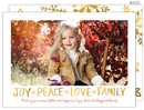 Peace Love Family Flat Holiday Photo Cards